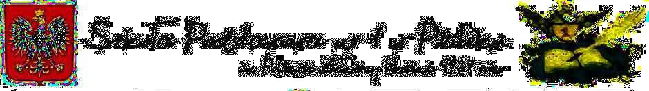 logosy SP1